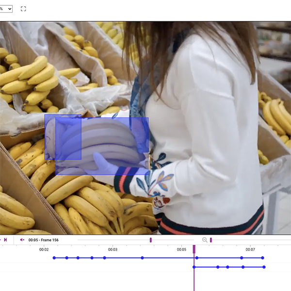 Video Annotation of Store